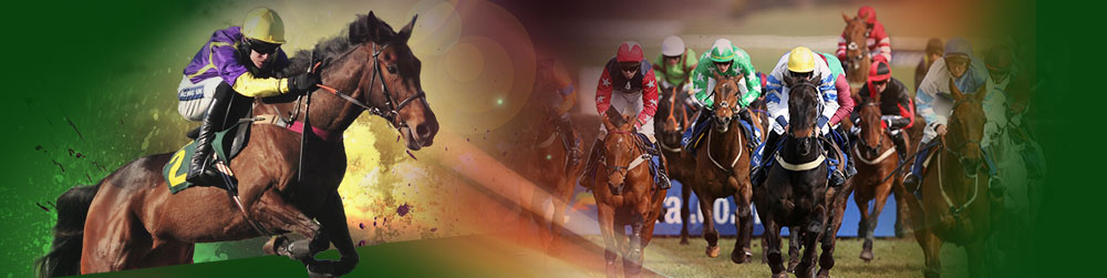 Grand National History
